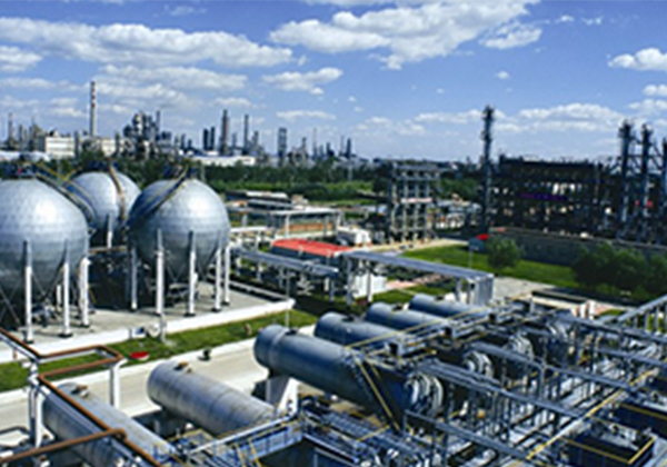 Petrochemical coalification
